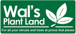 Wals Plant Land